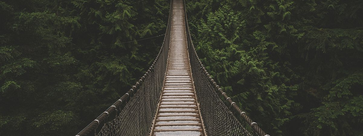 Cross the bridge to a leadership position with an Executive Master of Leadership degree.